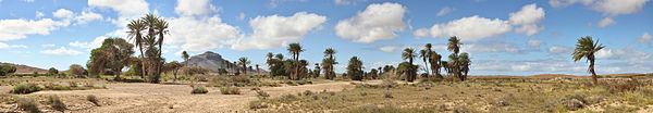 Oasis, central western Boa Vista Photo by: Ximonic, Simo Rasanen GFDL