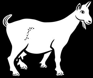 animal-1296007_960_720