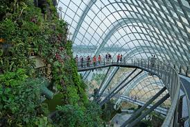 Cloud Forest, Gardens by the Bay Photo by: Allie Caulfield CC BY 2.0