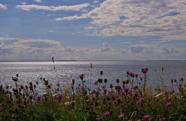 Sea view, Funen